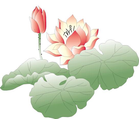 Lotus flower lotus flower art design lotus art design lotus