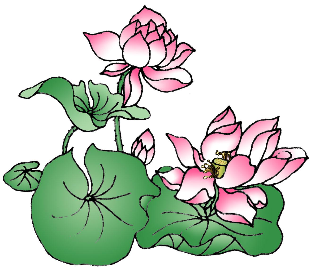 Lotus Flower Art Clearwisdom.net...